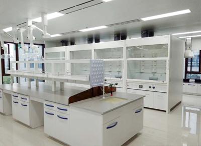 全钢化验室通风橱实验室抽风柜