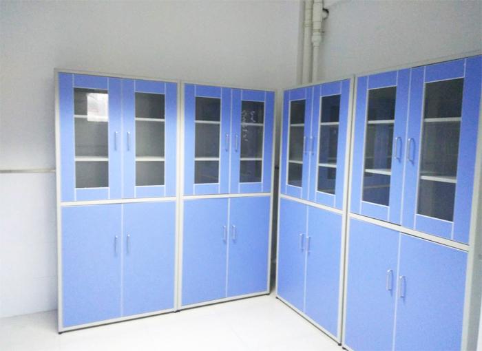汉闵药品试剂柜样品柜生产